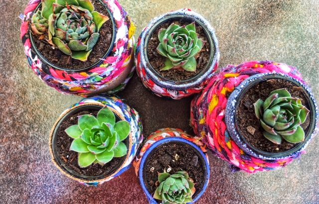 Baby Food Jar Planters Tutorial Leaning Into The Journey